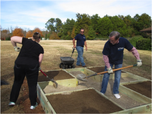 Volunteers fill planting beds with soil